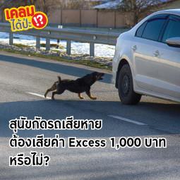 สุนัขกัดรถเสียหาย ต้องเสียค่า Excess 1,000 บาทหรือไม่?
